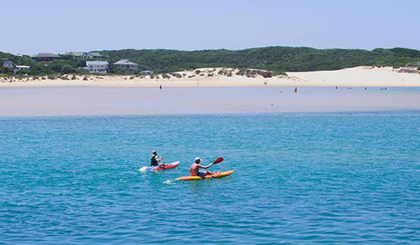kayak port alfred travel